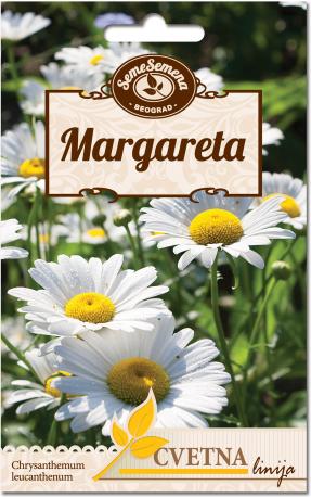 seme za cvece margareta